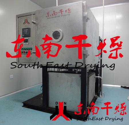 铁棍山药真空冷冻干燥机-东南低温急冻