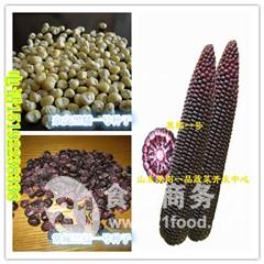 黑甜糯玉米种子