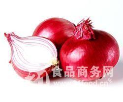 洋葱提取物 洋葱黄酮(西安天瑞工厂批发)