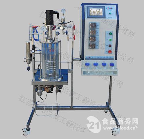 体机械搅拌发酵罐