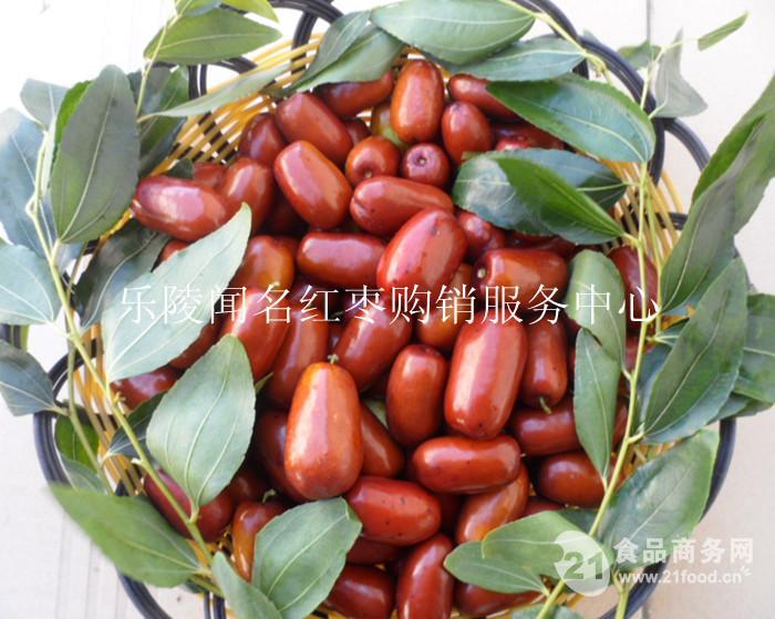 长红枣供应批发基地