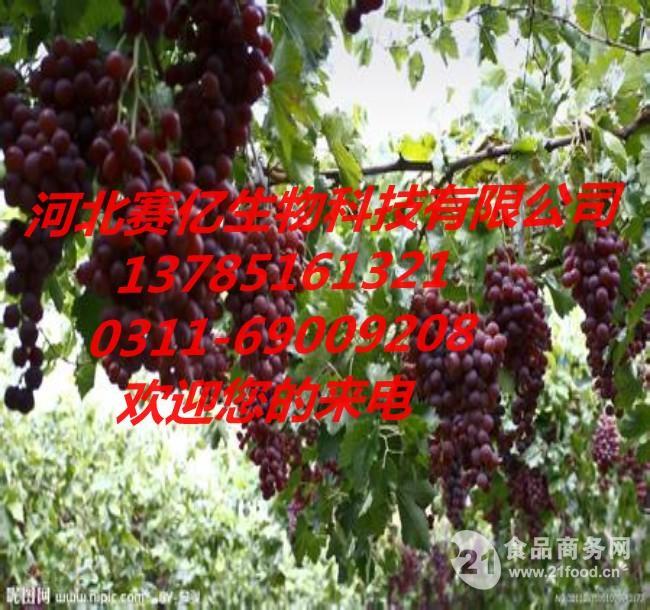 供应  河北  食品级  葡萄香精