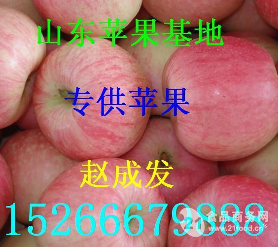 今年山东烟台红富士苹果价格