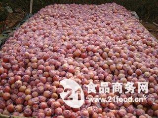 苹果价格 红富士苹果批发价格