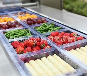 全自动新鲜蔬菜真空包装机