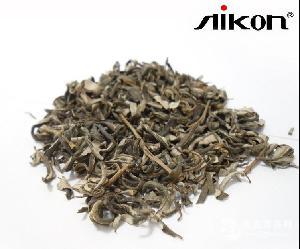 野生沙棘茶 绿色保健茶饮品