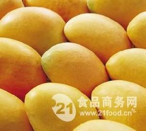 新鲜小台农芒果