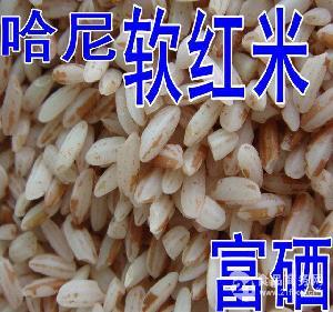 云阳哈尼红糙米  补铁软红米