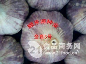 金育3号大蒜种子顺禾源专卖