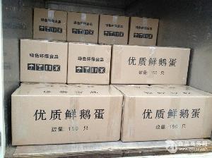 新鲜鹅蛋150枚/箱大量供货