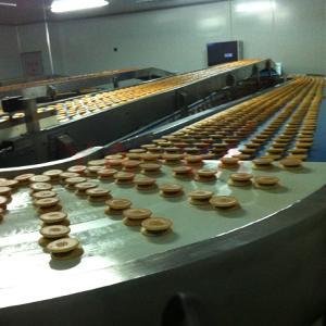 自动输送蛋糕皮带输送机