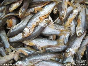 鱼干品质改良剂