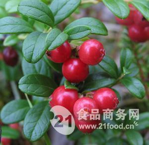 野生紅豆果(蔓越莓)速凍果