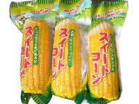 出口日本甜玉米棒