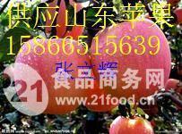 潍坊红将军苹果批发