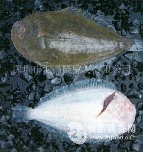 新西兰鲽鱼