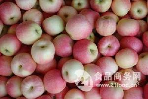 美八苹果批发价格 *美国八号苹果价格