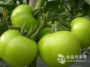 生番茄香精