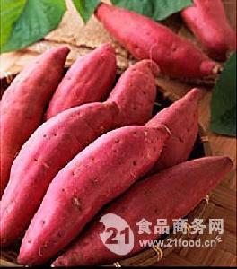 红皮苏薯8号红薯
