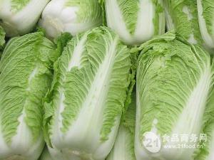 北京三号大白菜