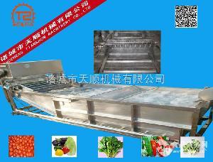 腌菜制品大头菜清洗机(清洗脱盐成套设备)