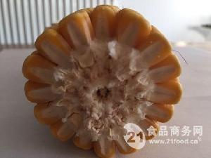 高产玉米种子兴农998