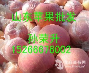 山东苹果/山东苹果产地