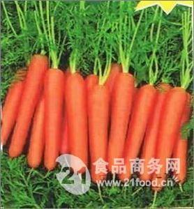 陕西红萝卜产地价格,陕西大荔红萝卜价格行情咨询