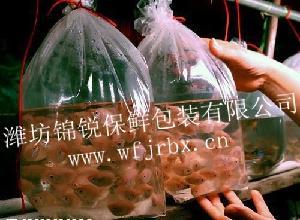 活鱼水产专用锦锐气调呼吸袋