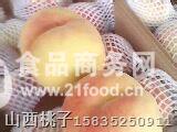 花王二号桃(15534886915)