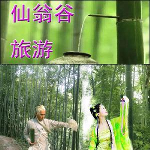 泽潭毛竹酒珍极窖胎版