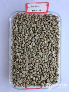 阿拉比卡咖啡生豆一级