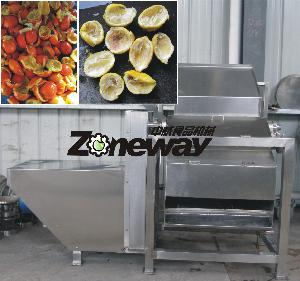 QBZJ-6型柠檬去皮榨汁机