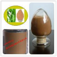 银杏提取物 25公斤/桶 (银杏黄酮)