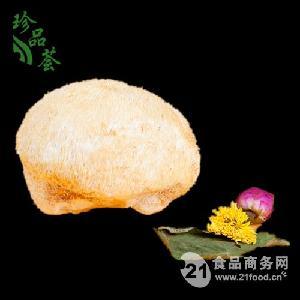 猴頭菇 野生菌