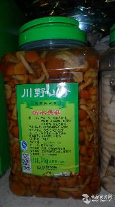 川野清水滑子菇