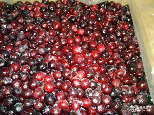 速凍蔓越莓
