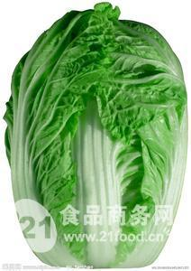 金秋王秋白菜种子