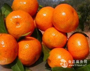 新橙皮苷二氢查耳酮