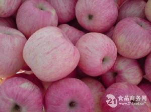 山东出售优质80-100优质红富士苹果