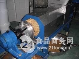 双螺生姜榨汁机