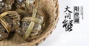 1998型 阳澄湖大闸蟹