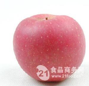 山东沂水嘎啦美八金帅苹果购销基地