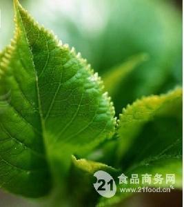 叶绿素铜钠盐