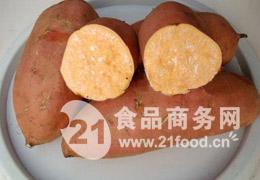 脱毒红薯种子553