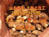 芋头产地价格