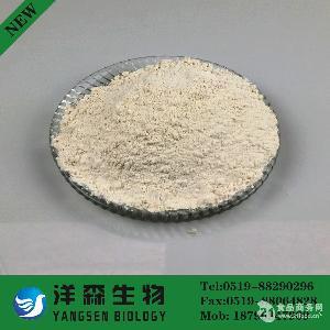 食品酶制剂 糖化酶