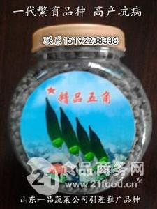 *的黄秋葵品种五角