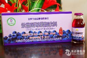 永富牌蓝莓果粒饮料248ml*10瓶