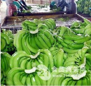 新鲜绿香蕉